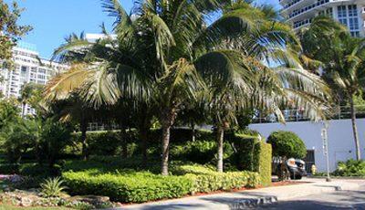 Квартира Bellini в жилом комплексе Флориды (США)
