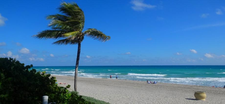 Флорида купить квартиру особенности покупки недвижимости в оаэ